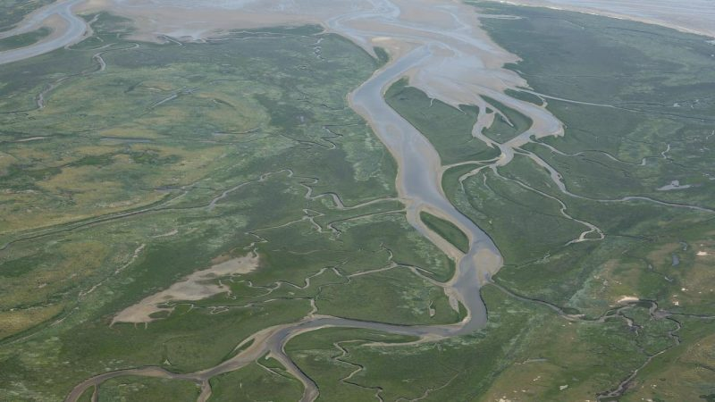 If the Wadden Sea is this value, make it three times its size