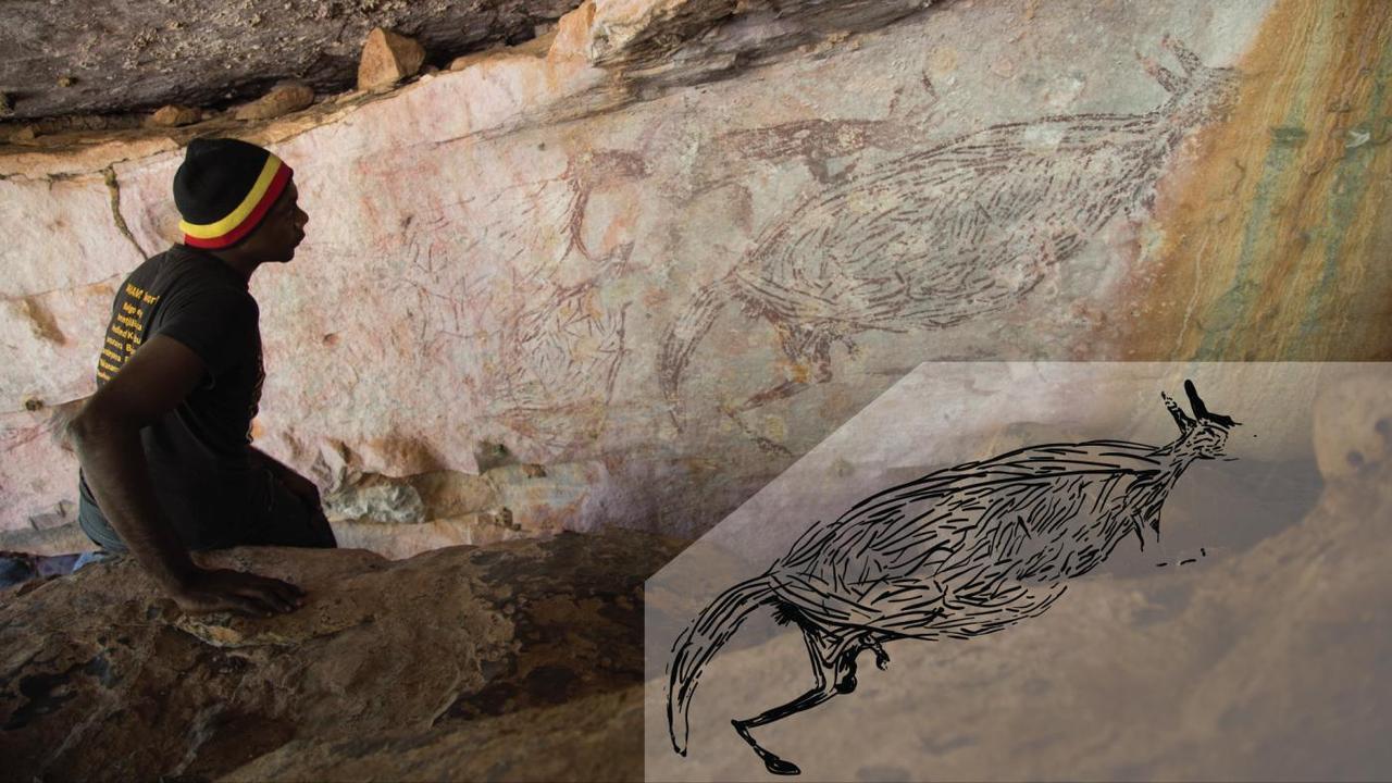 Kangaroo Image Australia's oldest discovered petroglyph |  Now