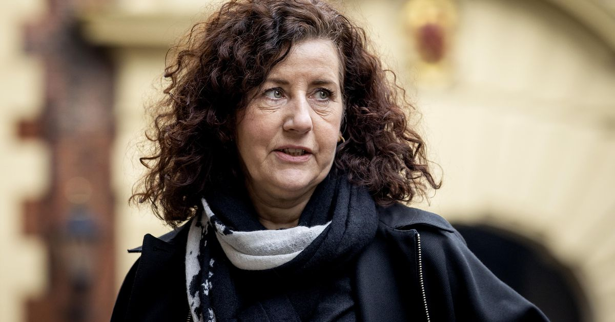 Minister: Concerns about Chinese influence in the University of Groningen |  Interior