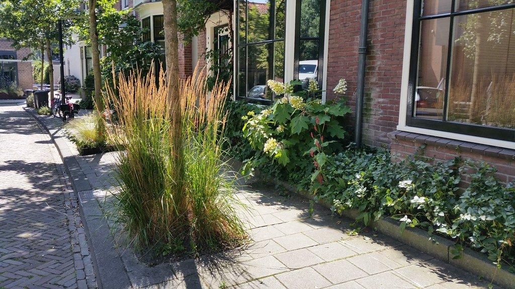 Walweek municipality participates in Steenbreek