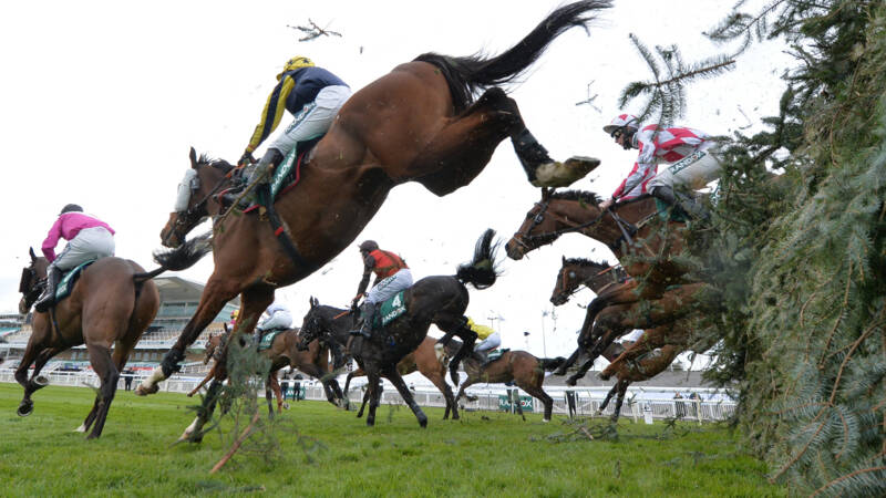 Eternal fame in ten minutes for man and horse with half a billion spectators
