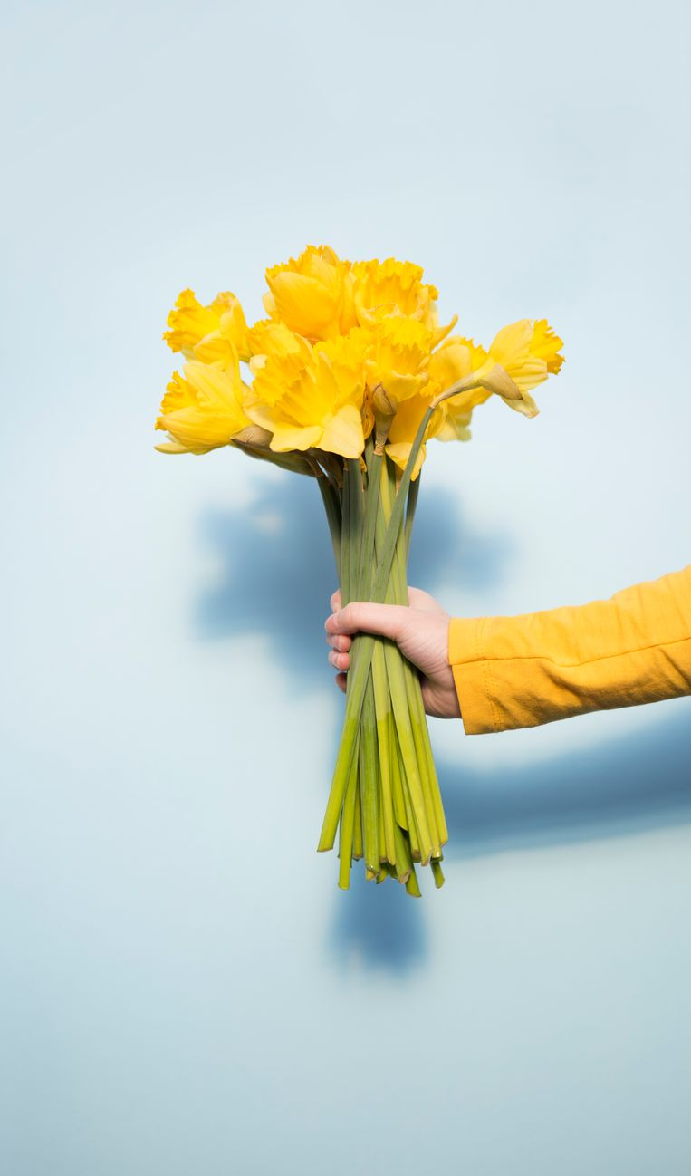 Everyone wants flowers at home, but how do you keep a beautiful bouquet for as long as possible?