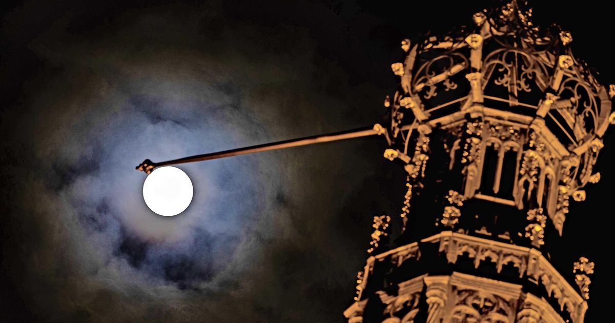 Exceptional: For the first time since 1909, the giant moon can be seen on King's Day |  The interior