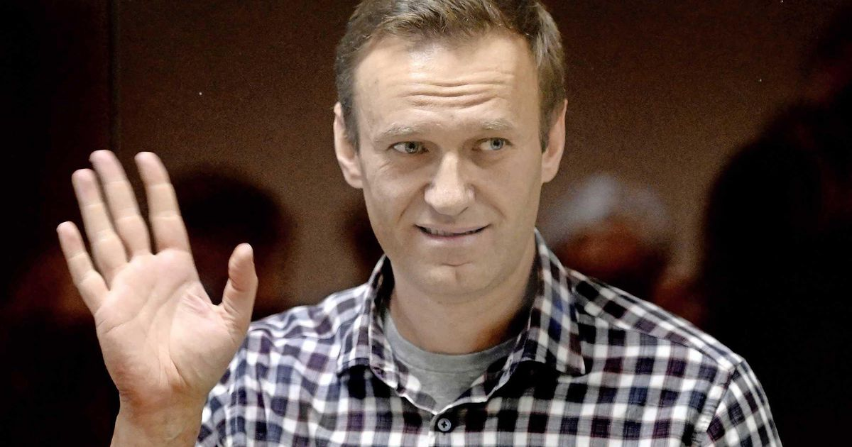 Private Doctors Calling to Navalny: Stop the Hunger Strike |  abroad