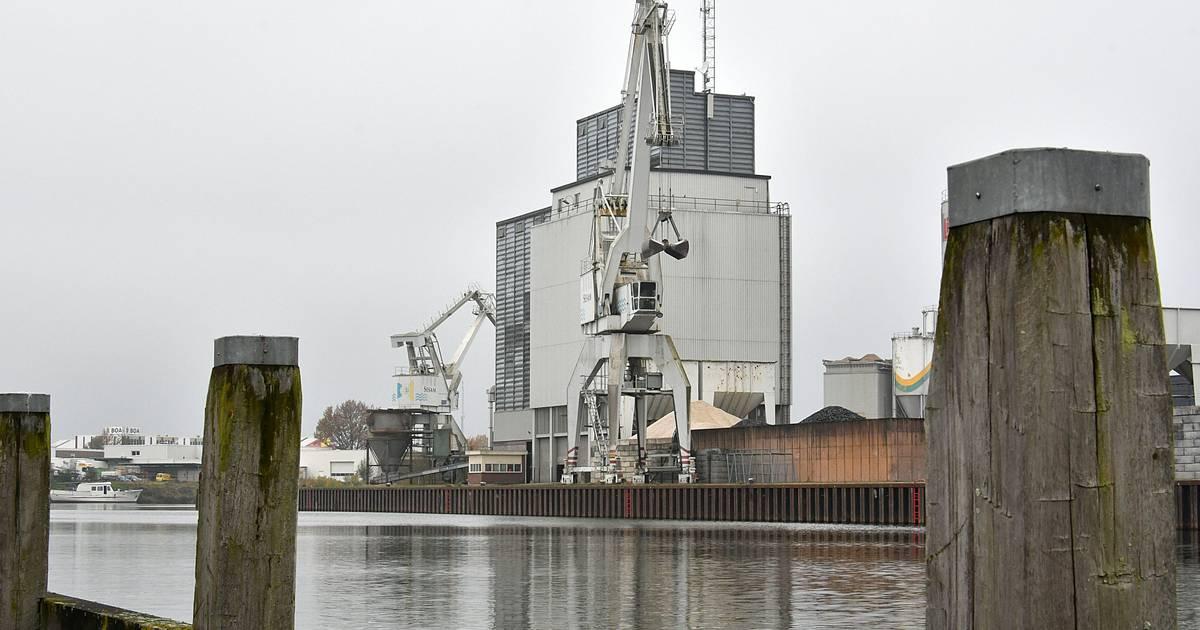 """Van de Rode bak buys """"the inner harbor gate"""" in his chant: """"needs more space""""    Chant it"""