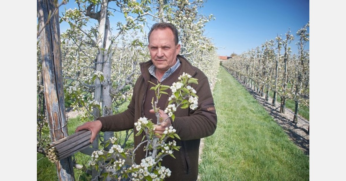 """""""With the cultivation of the tallest orchard in Europe, we are creating a calling card for the region."""""""