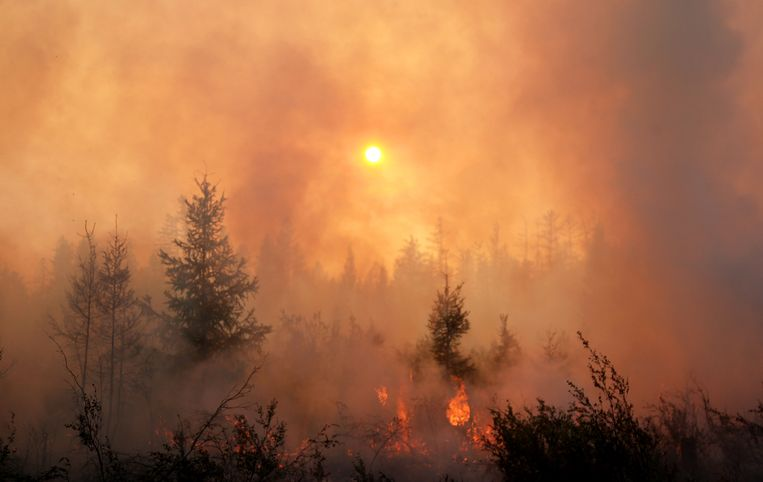 """Experts worry about """"zombie fires"""": the fires that erupt again after hibernating under the snow"""