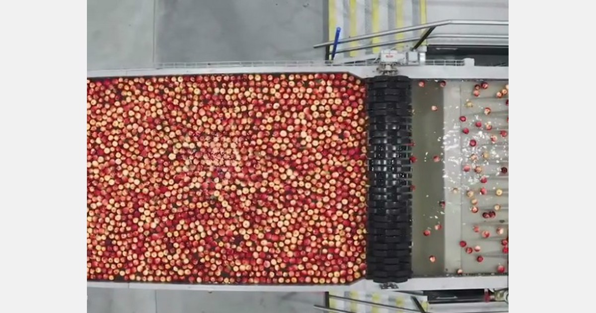 Rocket sends millions of snack apples
