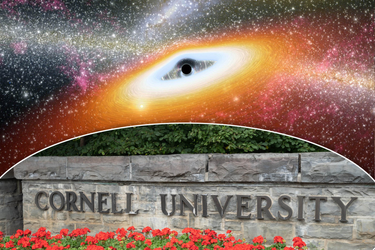 Cornell course teaches black holes can be linked to 'racial blackness'