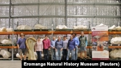 """The research team poses with the bone """"Kuiper"""" (Hand-out via Iromanga Natural History Museum / Reuters)"""