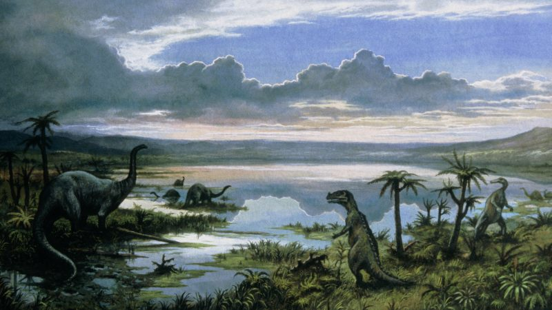 Dinosaurs had a hard time long before the meteor impact - Wel.nl