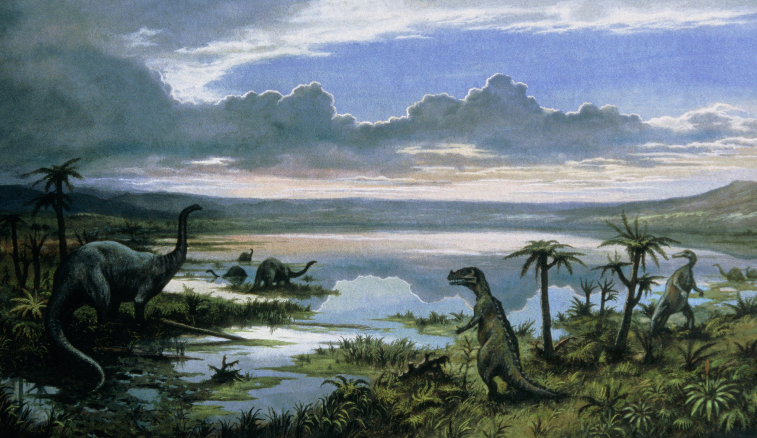Dinosaurs had a hard time long before the meteor impact – Wel.nl