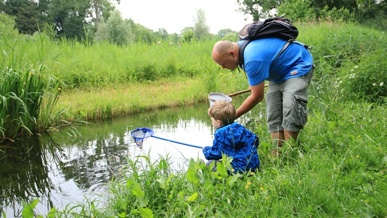IVN Nature Education wins Prince Bernhard Cultuurfonds: 'Very unexpected'