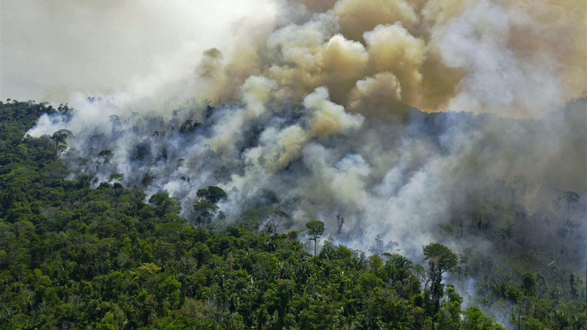 Record deforestation and drought in the Amazon, where wildfire season begins بدأ