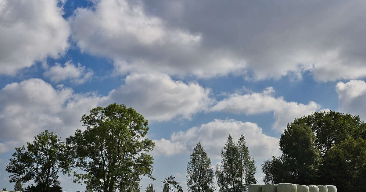 Weather: Sunroom and maybe afternoon shower |  Zwolle's Blog