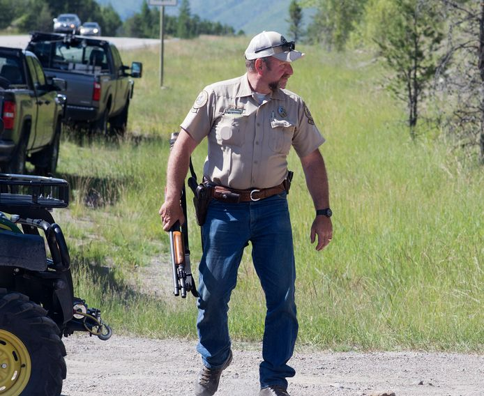 An FWP ranger chases a grizzly bear that killed a ranger in late June 2016. The victim was riding an off-duty bike on a popular trail network near West Glacier when the bear attacked him.