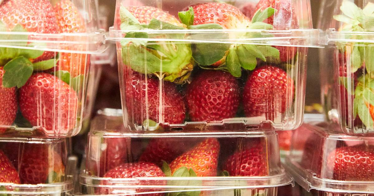 53-year-old Australian woman released after panic over strawberry needles and pins |  cooking and eating
