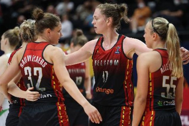 The training duels of the Belgian cats against Spain and the United States have definitely been canceled – other sports