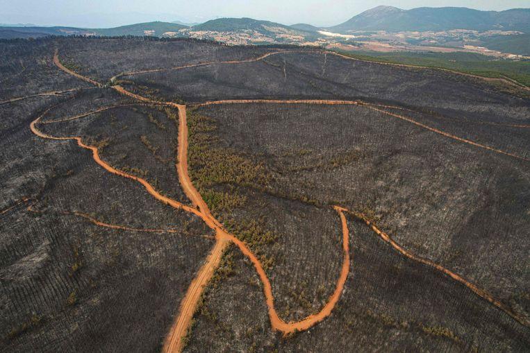 In the southwestern province of Mugla, Turkey, forest fires have burned nature reserves.  AFP photo