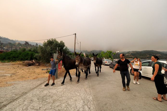 Evacuation of the Kochyli Beach holiday resort near the village of Limni on the island of Evia, about 160 kilometers (100 mi) north of Athens.