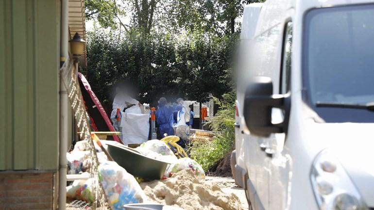 Bird flu in Hobby farmer Heaton: Owners watch being emotionally killed