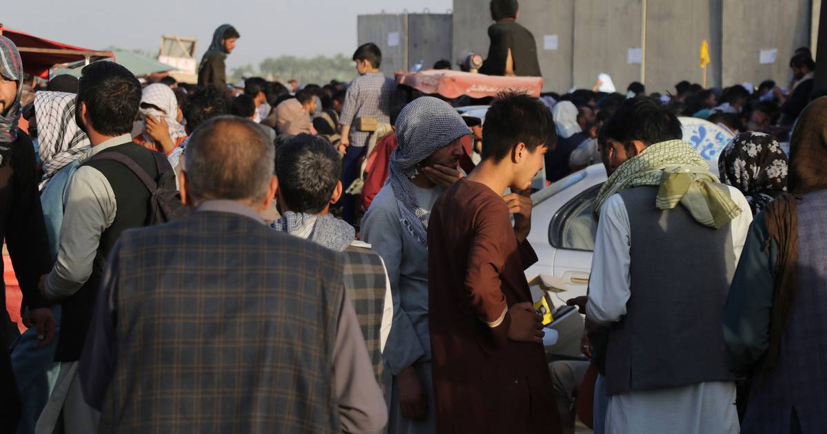 """""""The Dutch are stuck in a bus at Kabul airport, many Taliban and there are no Dutch soldiers anywhere"""" abroad"""