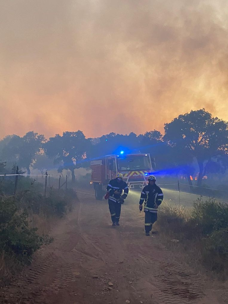 Thousands of people evacuated and camp sites evacuated in southern France: 'The fire is still under control'
