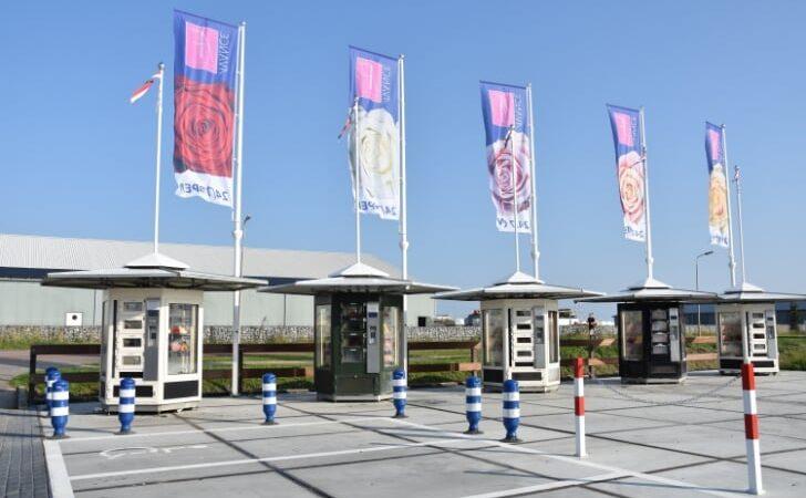 Avans Roses, Ambassador of Flower Products in the Netherlands
