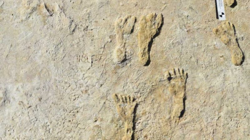 Footprints prove that humans walked across America 23,000 years ago