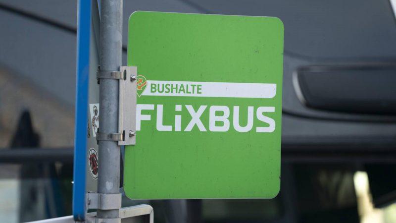 Mother FlixBus buys American bus company Greyhound