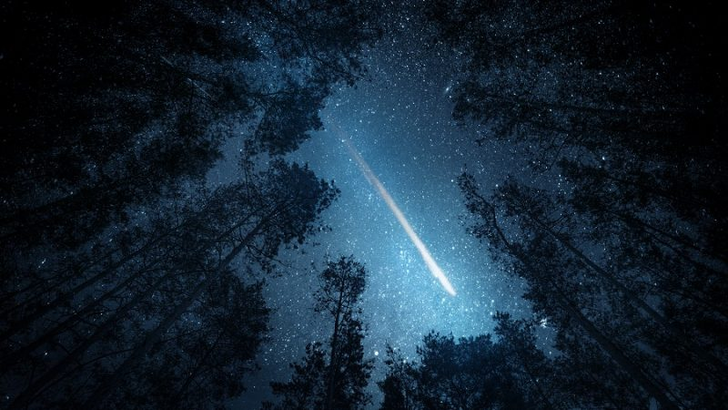 A 2.8-pound meteorite from space hits the ceiling of a Canadian woman's home and falls on the bed: The Tribune India