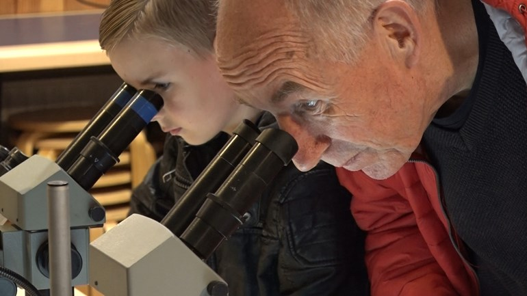 Chipping, cutting and polishing during Geology Day Hunebedcentrum